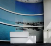 Adhésif décoratif, tendance Wall covering